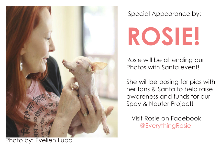ROSIE_APPEARANCE